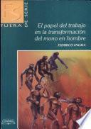 Papel Del Trabajo en Transf. Del Mono